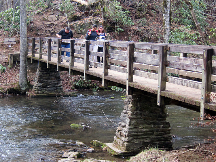 abrams falls bridge